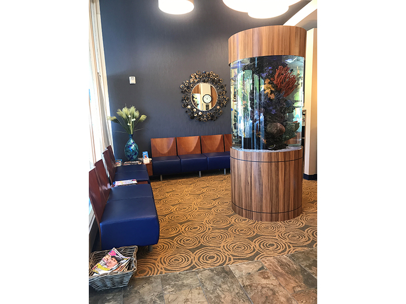 Large aquarium in Dr. Chorak's reception area in Mercer Island Washington.